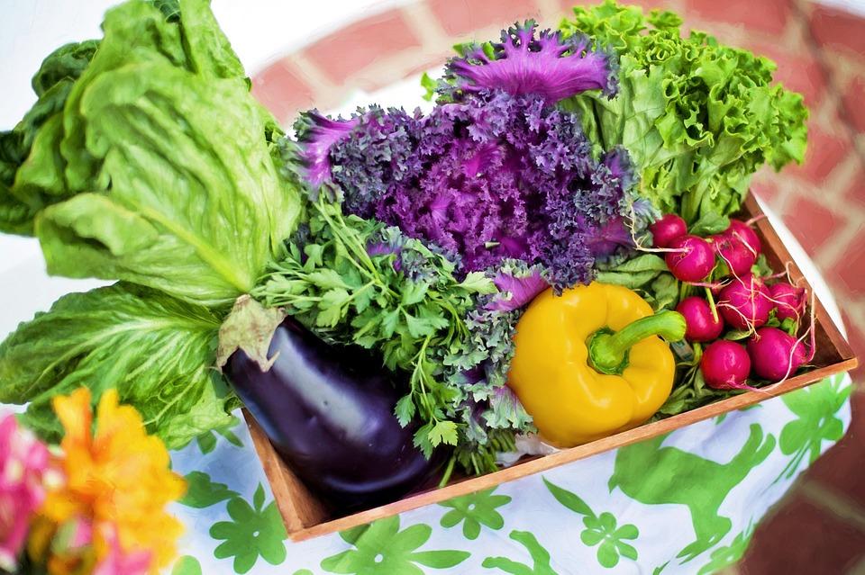 zelenina 1